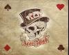 AcesHigh Pic. {3}