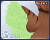 [Pets] Kira | tail v2