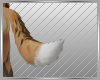 ⍙ Maned Wolf Tail