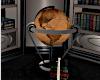 }WV{ Library Globe *Ele*