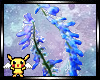 Pea flower border