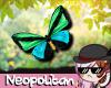 Green & Blue Butterflies