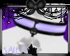 Salem's Collare