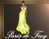 PdT Sunny Fern Gown
