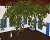 Greek Ceiling Vines