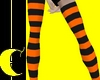 OrangeNBlack Stockings