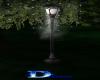 1512    Night Light