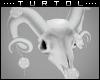 F  Ram Skull + Roses