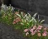 U Edge Garden Flowers