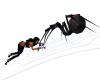 Animated Spider Web