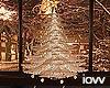"Iv""Christmas tree"