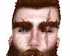 caoba brown manly eyebro