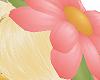 [AG] Daisy Hat