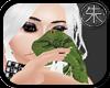 }T{ green snake