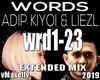ADIP KIYOI & LIEZL-Words