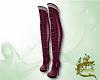 Autumn boots V1