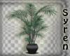 Plant BMErald