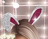 Bunny Playboy ears