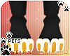 [Pets] Zorro | paws