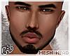 G`Zohar Mesh .