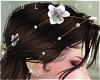 J! Pearls Flowers add on