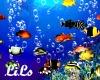 Wall Aquarium Dk Silver