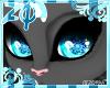Frys | Eyes >