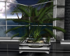 Scorpions Pottedplant