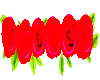 Red Bottom Roses