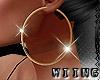 [W] Big Hoop Earrings