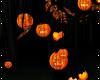 v  AHE; Tree Pumpkins