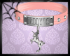 [NV] Pink Daddy's Collar