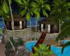 Palm Island Paradise