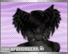 [S] Rinah Ears v1