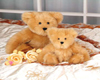 Teddy bear nursery bunde