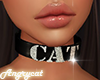 Choker Cat