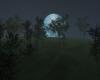 Full Moon Night Bundle