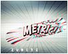 ZM| Metric! SkateBoard