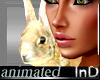 IN} Flopsy Bunny/Anim