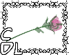 CdL Glass Rose [PINK]