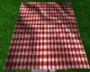 poseless picnic blanket