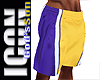 ICON  BBall Shorts V2
