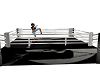 Rocky Boxing Ring
