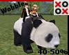 Panda for Scaler Kids