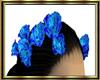 Blue Hair Roses