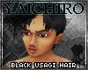 Black Usagi Hair