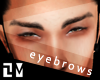 . THE LEADER EYEBROWS