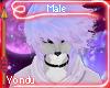 Y- Emi Hair