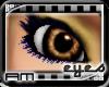 [AM] Human Brown Eye