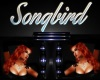 Songbird Neon sign